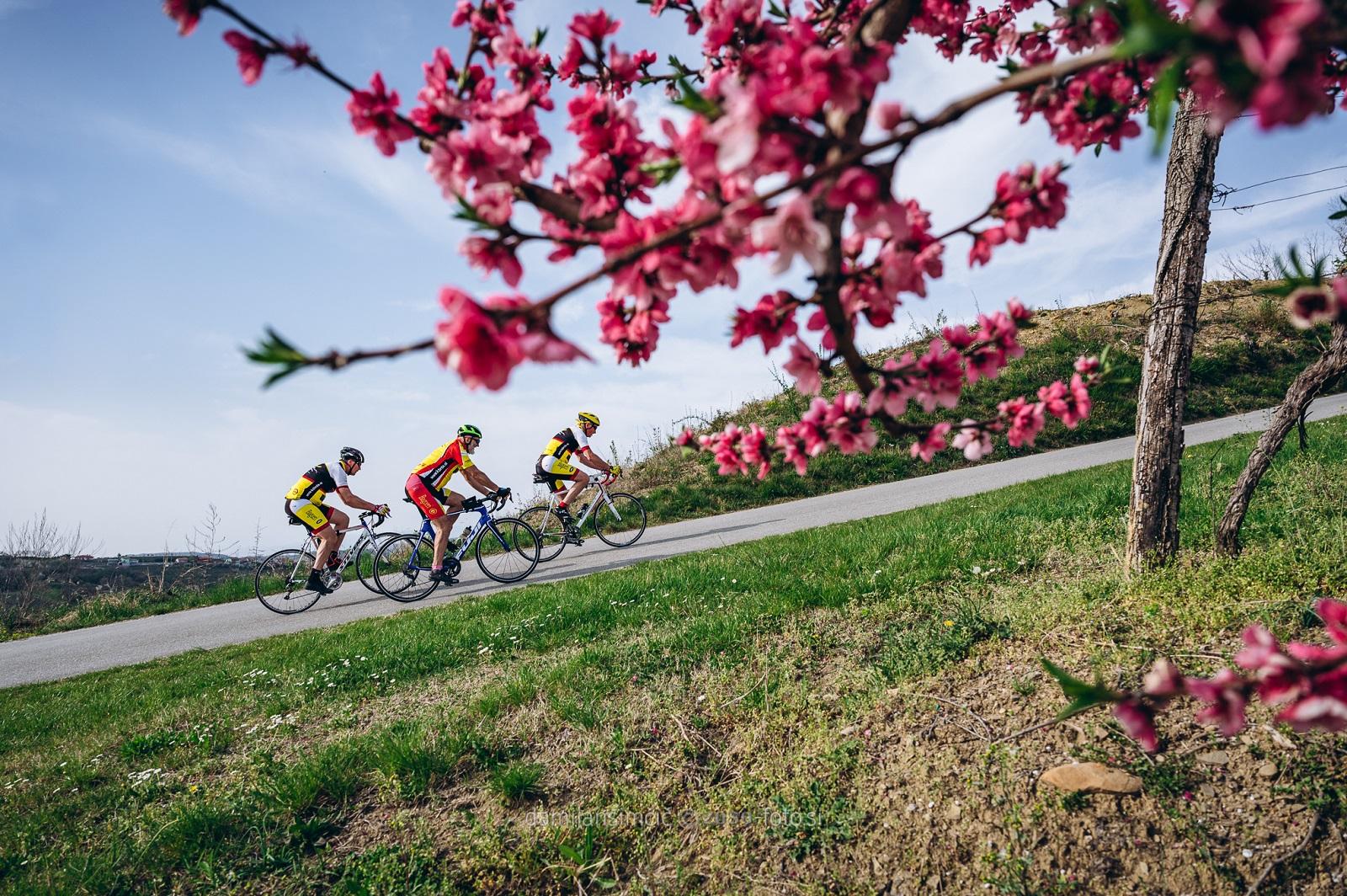 Ciclisti sulla strada tra Cerovo e Vipolze