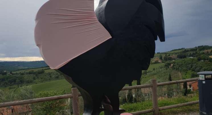 Gallo Nero in maglia rosa