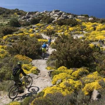 Elba in bici